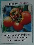 F1 Yash-192 Fresh Tomato