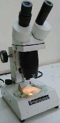 Digital Microscope for Woven