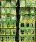 Bindi Packet Covers