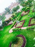 Podium Garden Maintenance Services