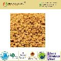 Best Quality Fenugreek Seeds Powder