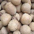 Dry Coconut Ball Copra