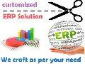 Customized ERP Software Development Services