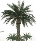Fake Date Palm Tree for Terrace Garden