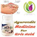 Ayurvedic Medicine for Uric Acid