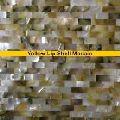 Yellow Lip Shell Mosaic Stones