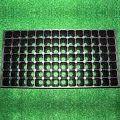 98 Cavities Nursery Trays