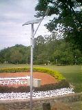 CFL Street Light(Solar)