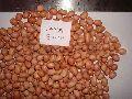 Peanut Kernel Java (80-90)
