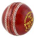 Premier League Cricket Ball