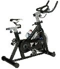Lifeline Stainless Steel Exercise Fitness Spin Bike Cycle 20 Kgwheel