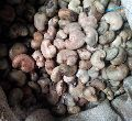 Ivory Coast - Raw Cashewnuts in Shell (raw Material)