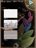 250x375 Glossy Series Wall Tiles