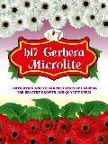 Gerbera Flower Micronutrients