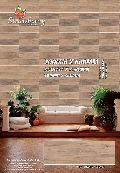Glossy Wall Tiles 600x600.20x60.