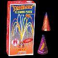 Flower Pots Big fireworks